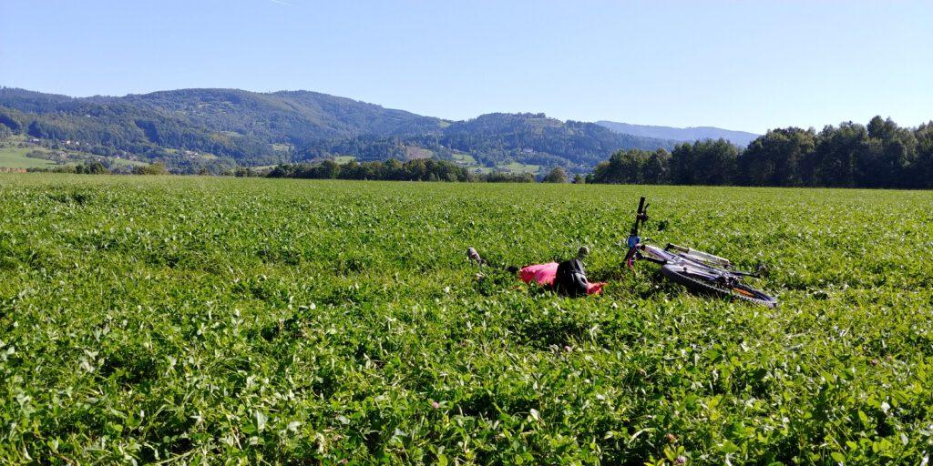 Rowerzysta z rowerem na zielonej trawie