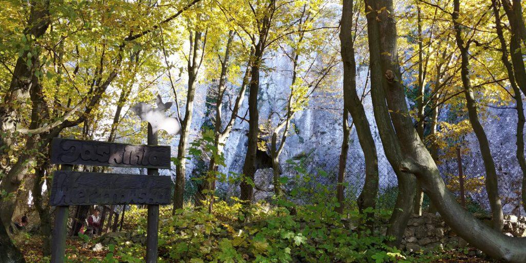 Jaskinia w wapiennych skałach