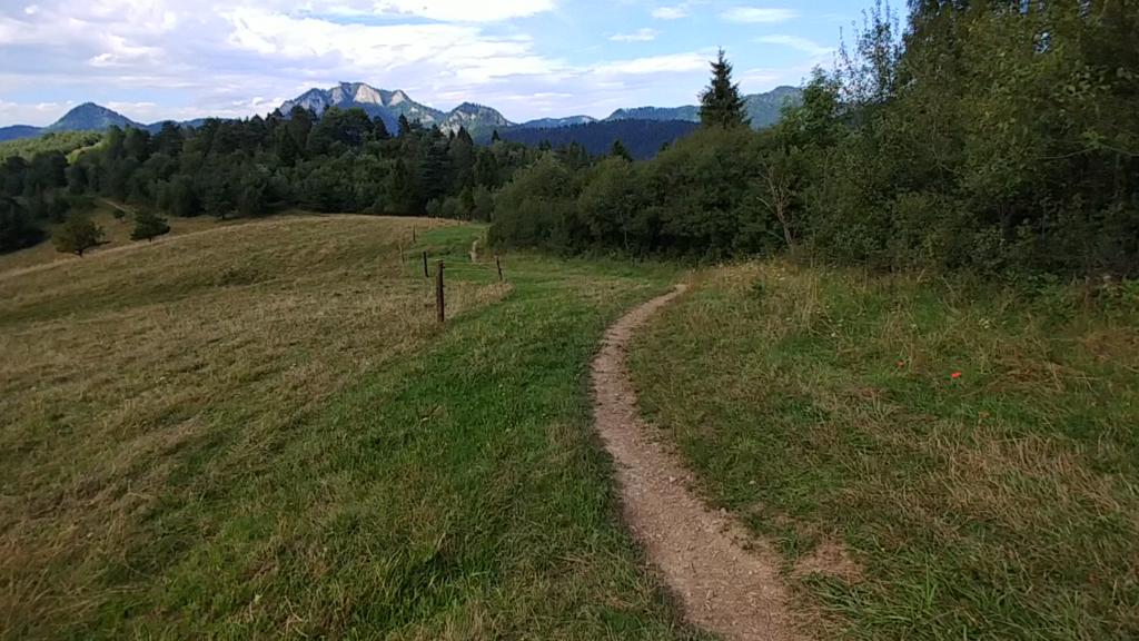 ścieżka przez pola w tle widać trzy korony