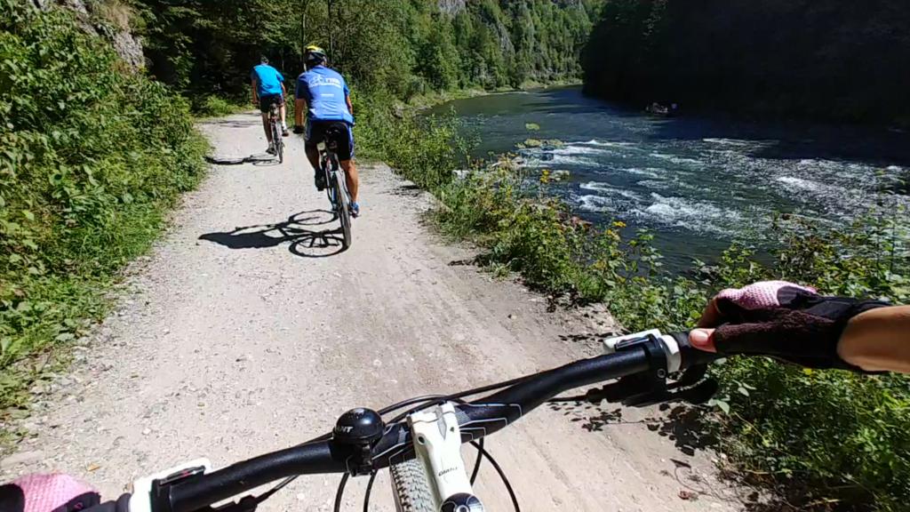 Kierownica roweru na tle ścieżki rowerowej w słoneczny dzień