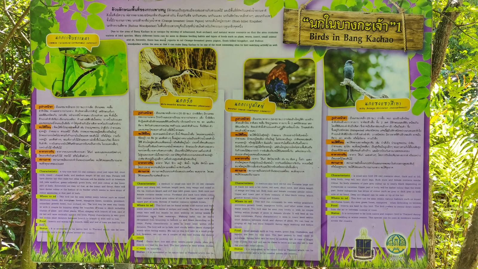 Bang Krachao tablica informacyjna