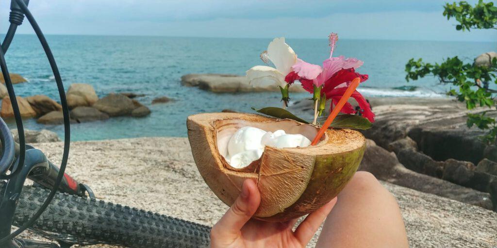 lody kokosowe w łupinie kokosa na tle morza