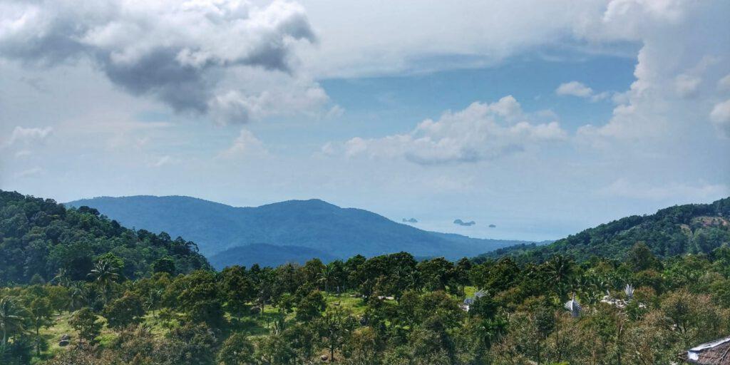Dzungla a w tle góry na tle zachmurzonego nieba
