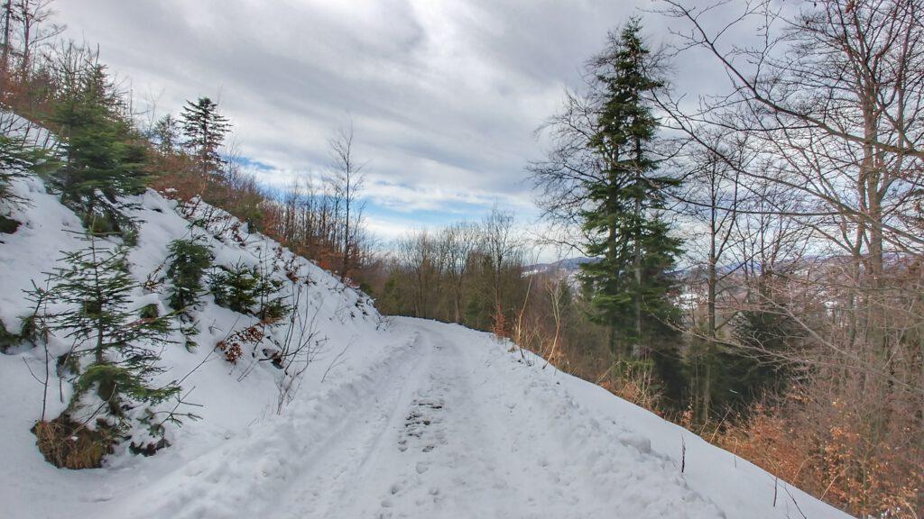 ośnieżona droga w górach