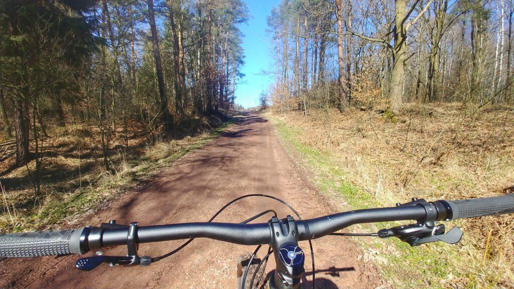 Kierownica rowerowa na tle ścieżki leśnej