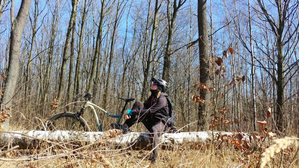 Dziewczyna siedząca na powalonym drzewie w lesie