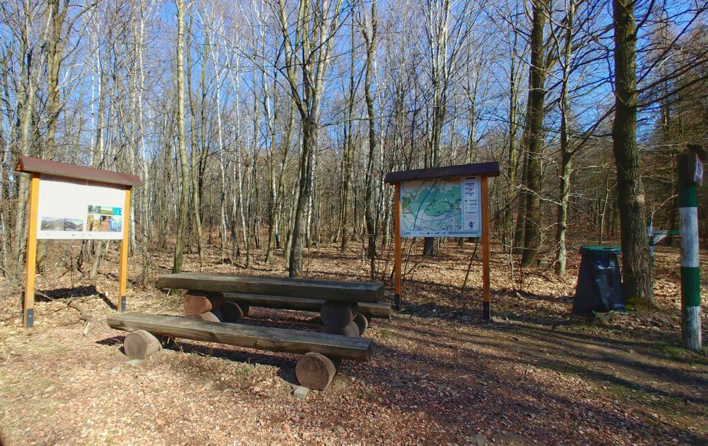 Miejsce odpoczynku w lesie