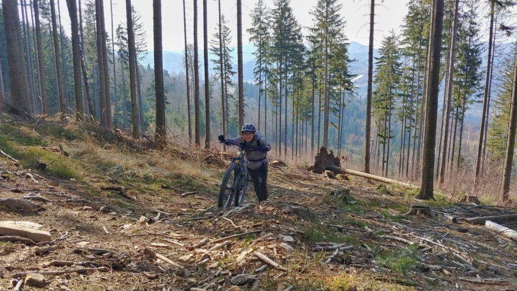 Dziewczyna z rowerem w lesie