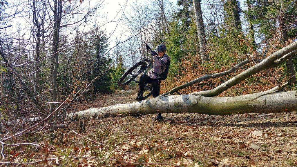 Dziewczyna z rowerem przechodząca przez powalone drzewo