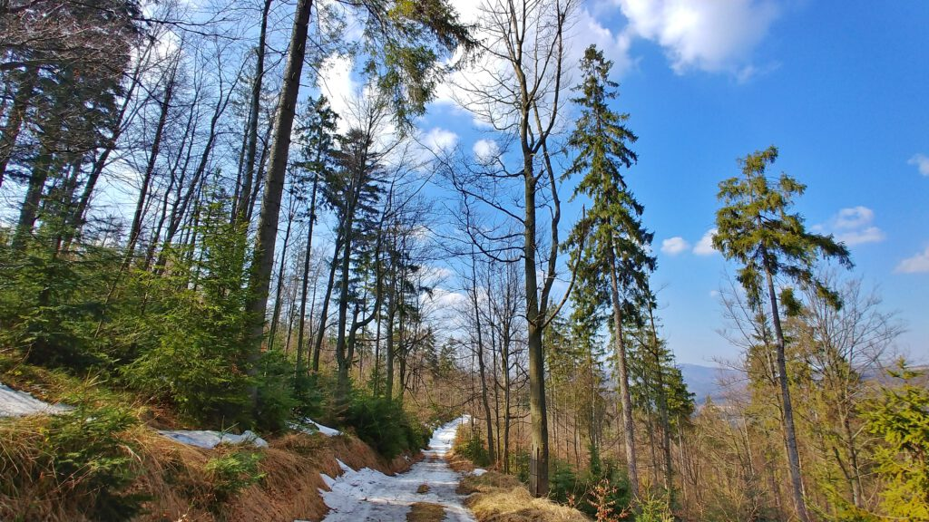 Górski krajobraz z resztkami śniegu