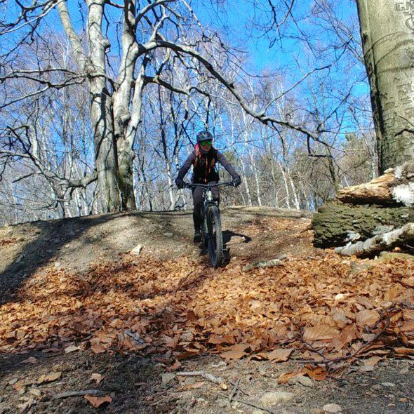 Dziewczyna na rowerze w lesie góra ramża