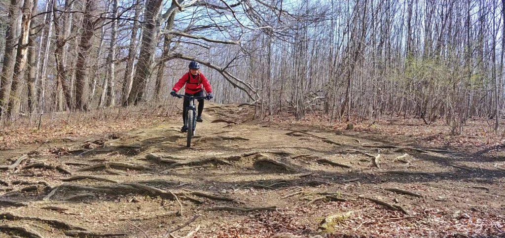 osoba na rowerze w lesie w czerwonej kurtce