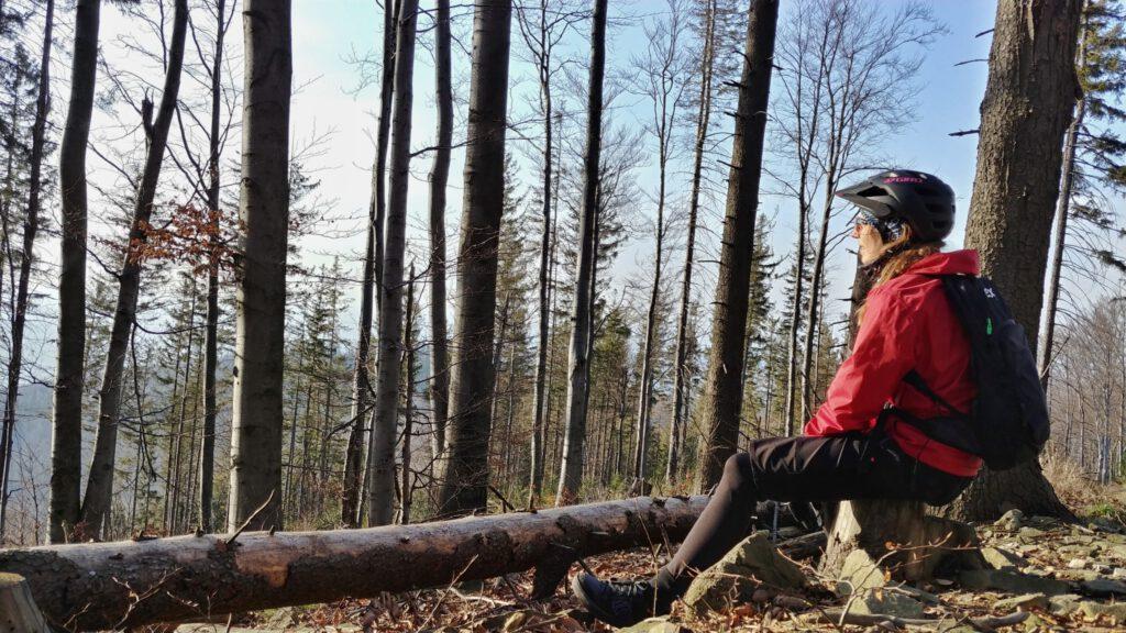 osoba patrzy w dal w lesie