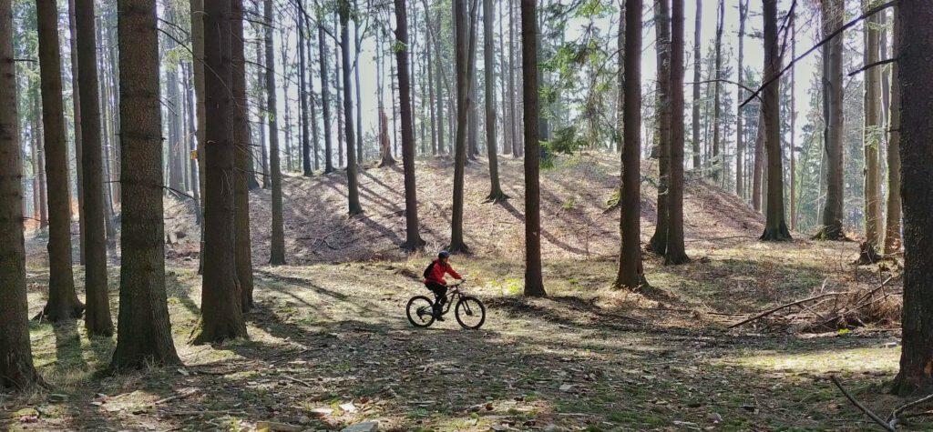 osoba na rowerze w laesie