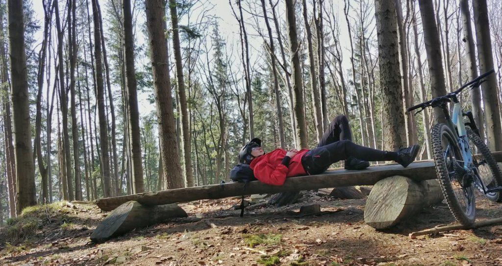 odpoczynek na ławce w lesie