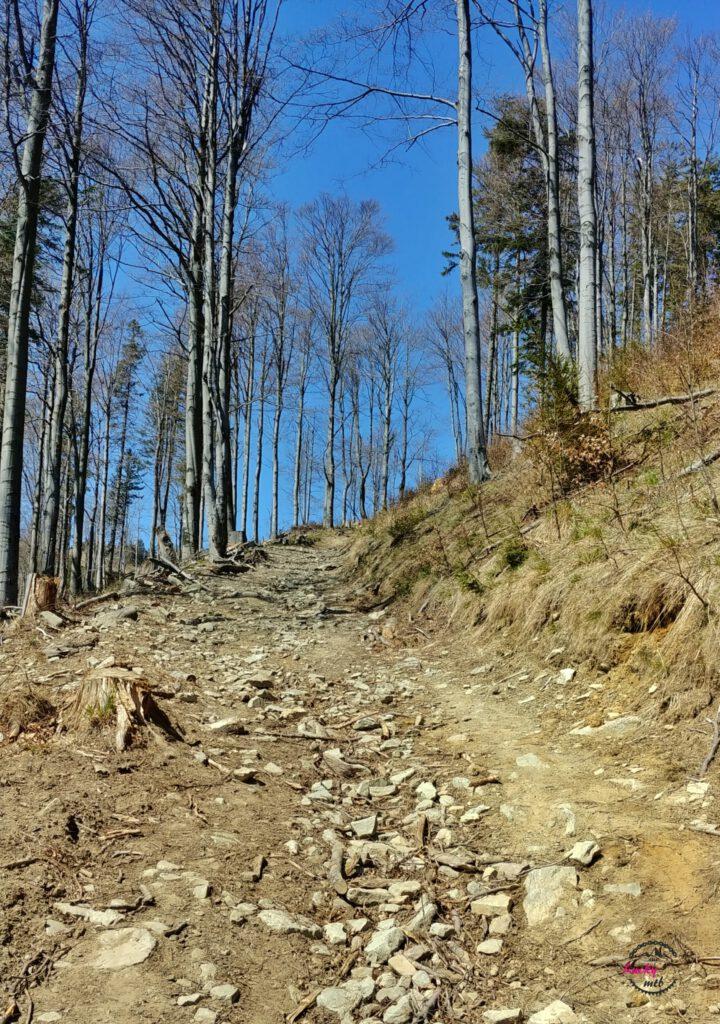 kamienista droga w górach