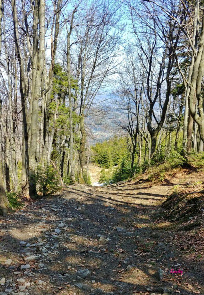 niebieski szlak w górach