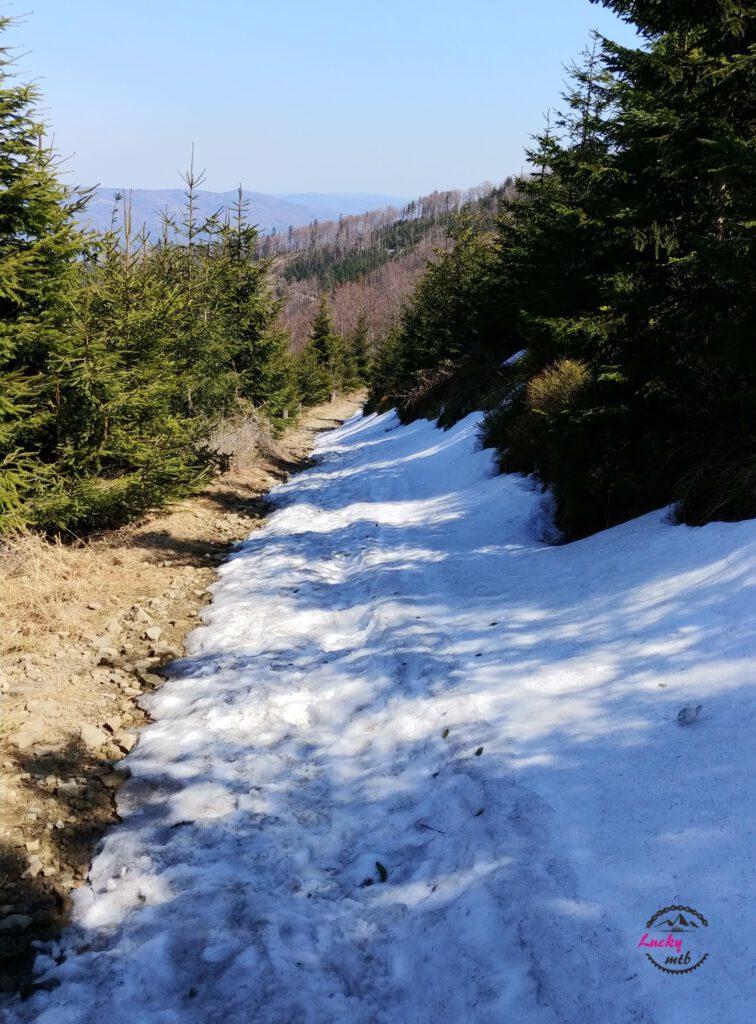 resztki śniegu na górskiem szlaku
