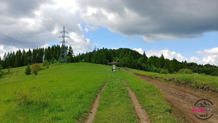 droga w górach przez łąkę