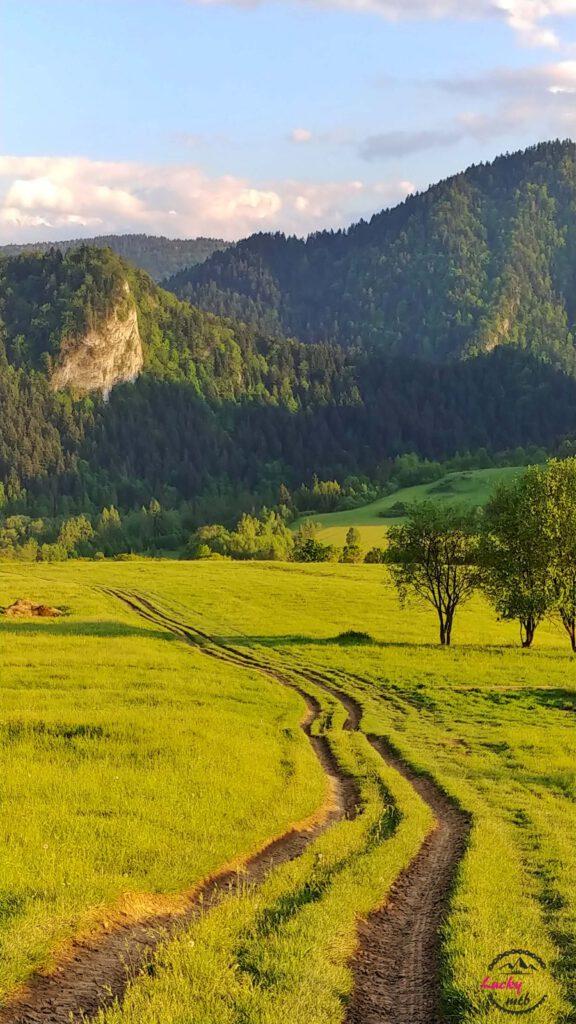 polna droga w górach