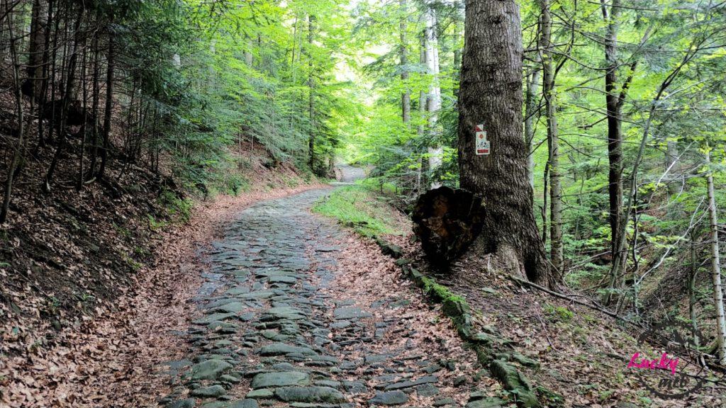 brukowana droga w górach